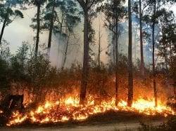 wildfire protection system contractors